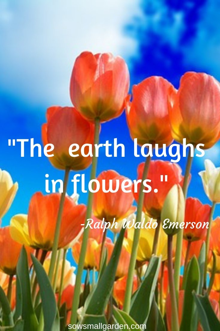 nature and garden quotes
