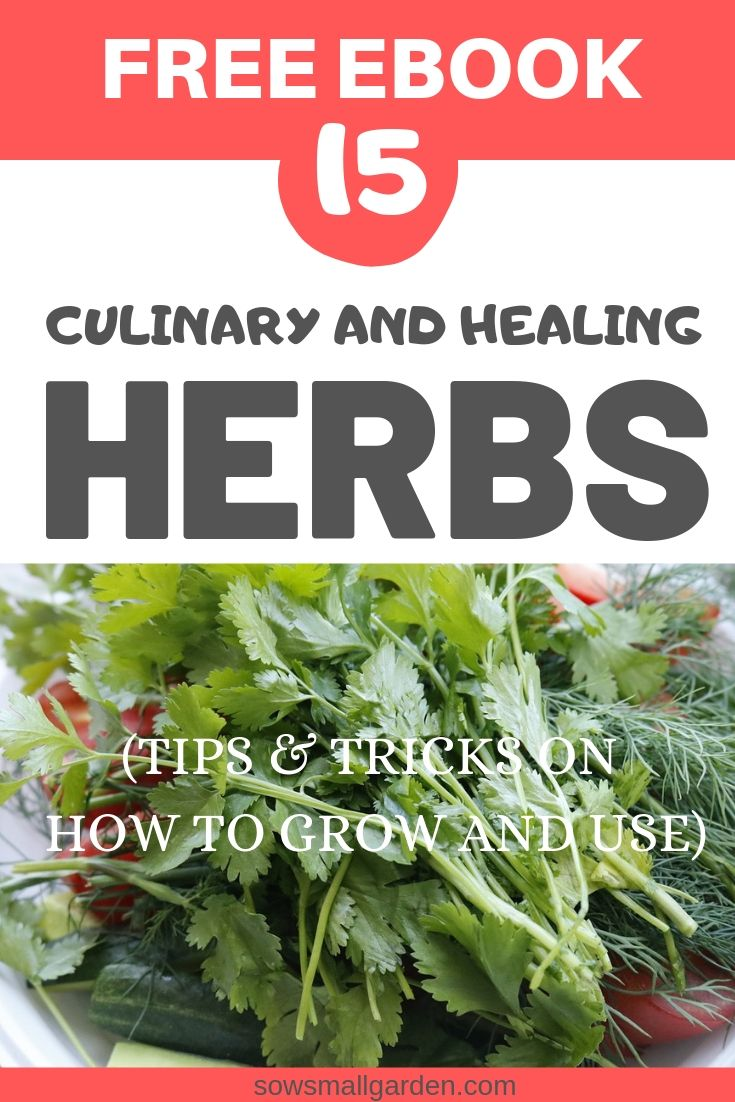 herb free eBook