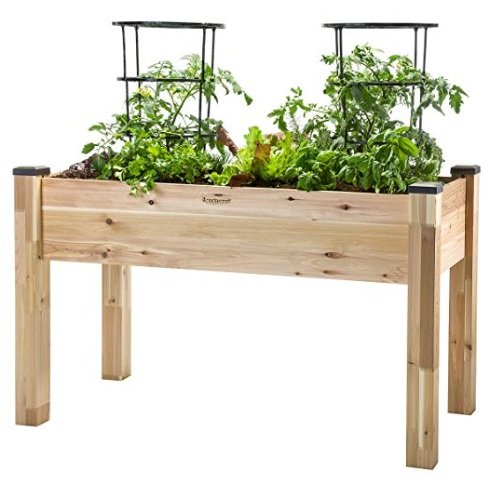 Gardening gift for Father's Dayv- elevated planter