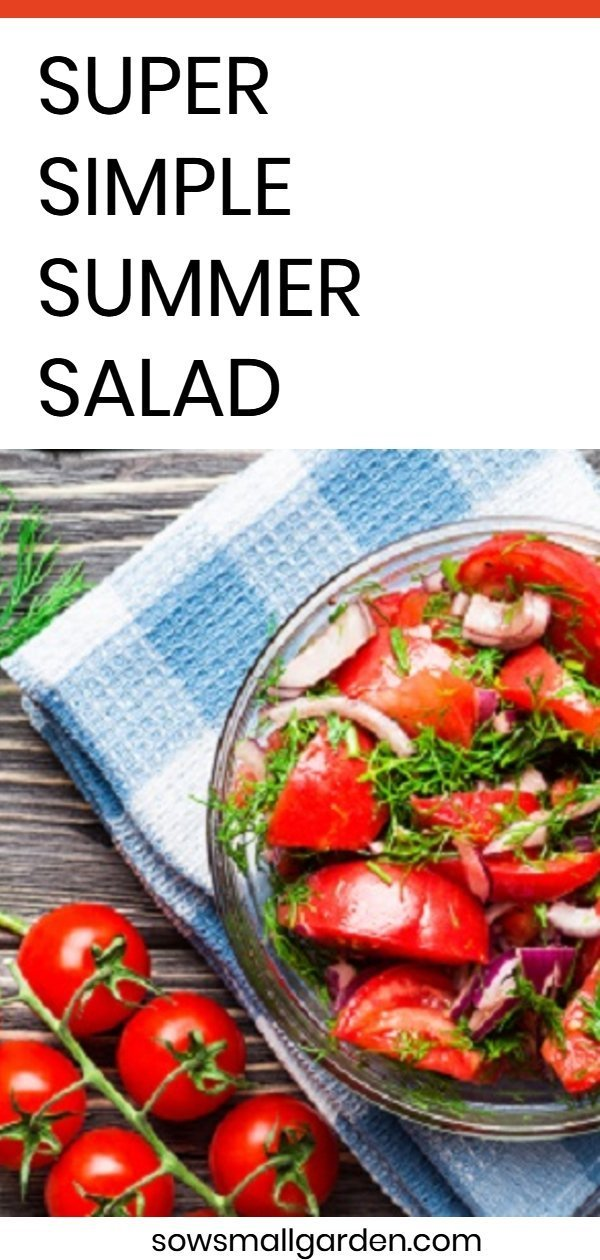 Summer Salad - quick and simple