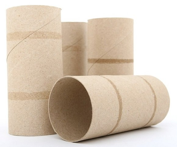 keep cutworms away with toilet paper tubes