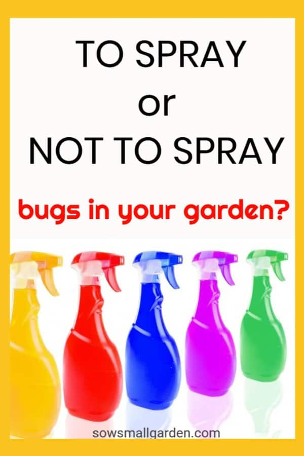 Should you spray bugs in your garden with commercial organic pesticides