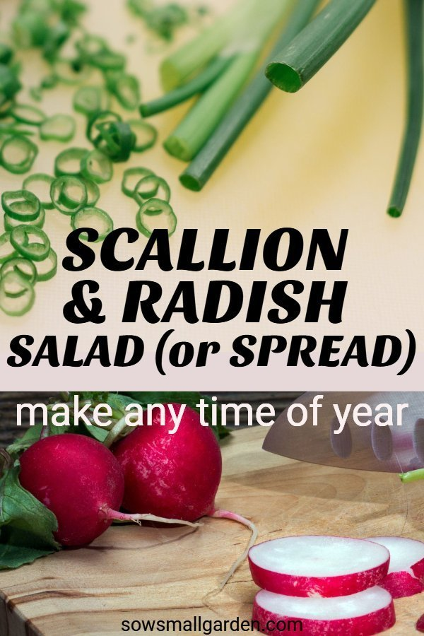Scallion and radish spread/side dish for holidays