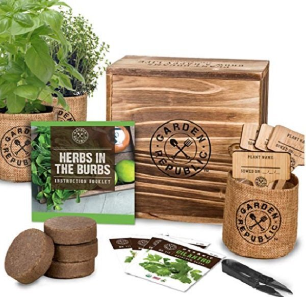 christmas gift - garden herb growing kit