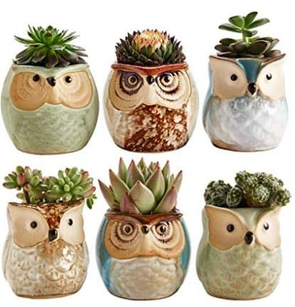 christmas gift - planter set