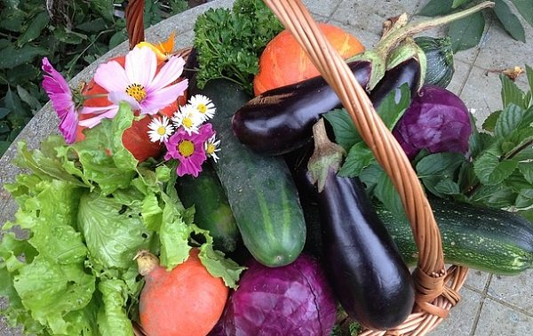 vegetables from the kitchen garden