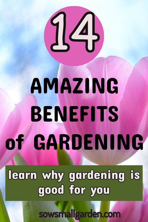 the benefits of gardening make it a great hobby