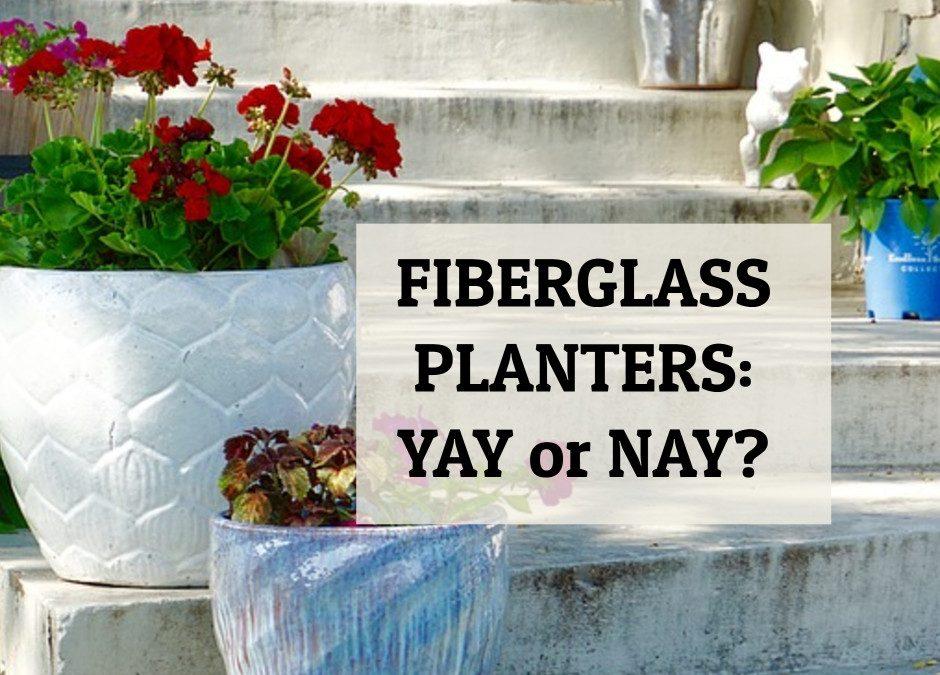 Fiberglass Planters: Yay or Nay?