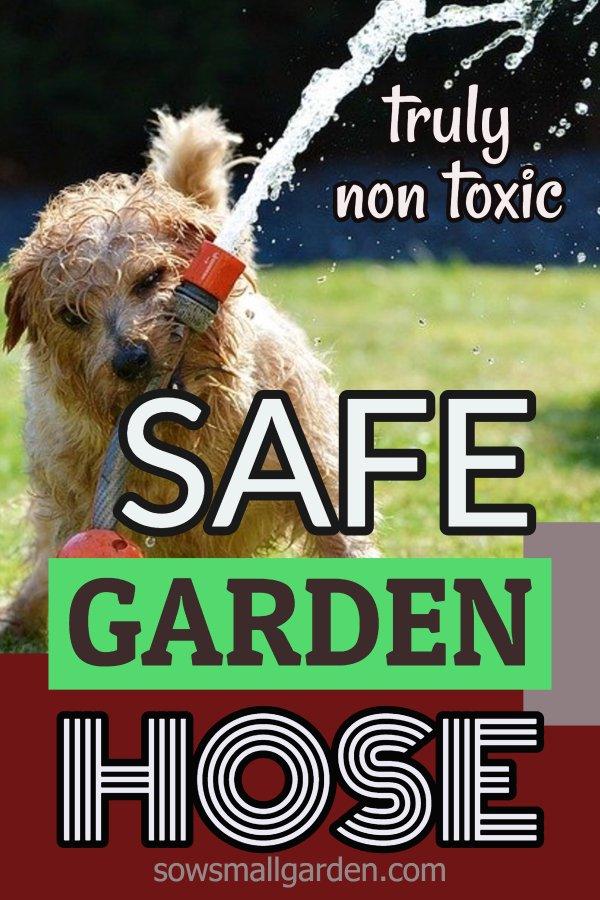 truly safe garden hose