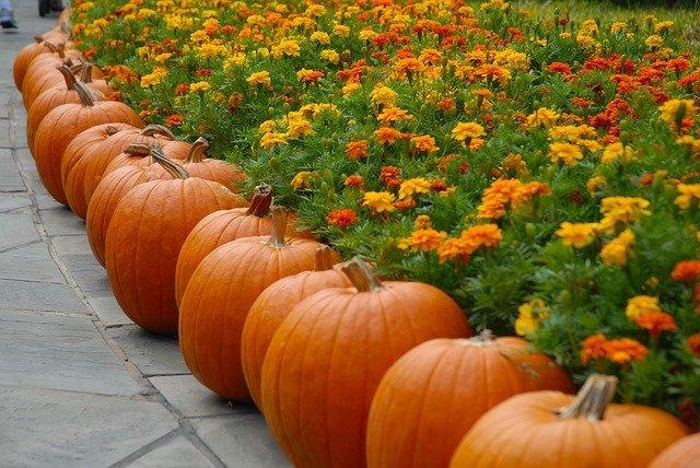 fall decor ideas: pumpkins and marigolds