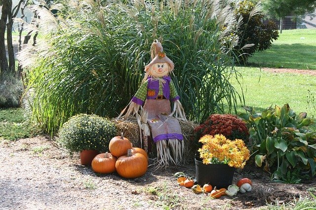 fall decorating ideas from nature materials
