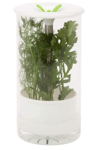 glass herb storage container