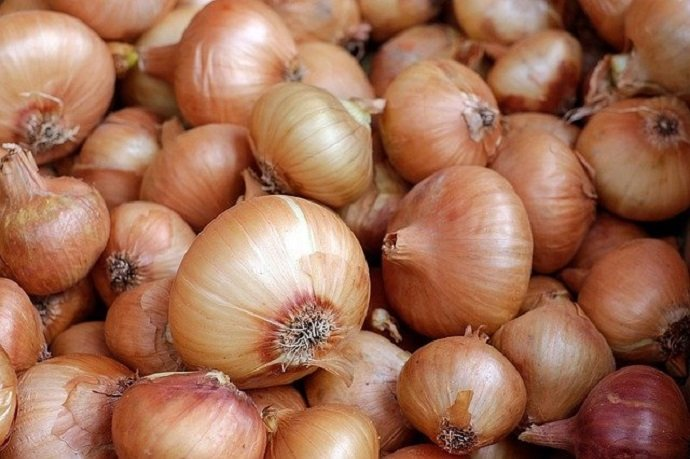 how long does onion last and how to store it