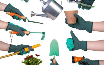 Best Garden Tool Sets (2021 Reviews)