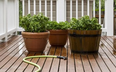 What's the Best Garden Hose Storage? (All You Need to Know)