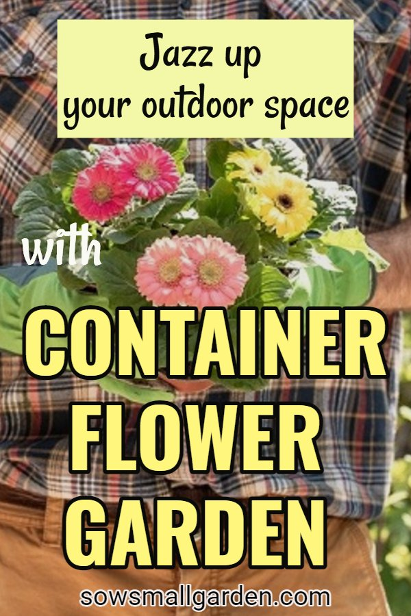 container flower gardening - 15 useful tips