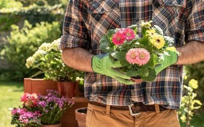 Container Flower Gardening (15 Useful Tips)