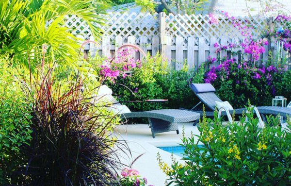 planning a garden: create some privacy