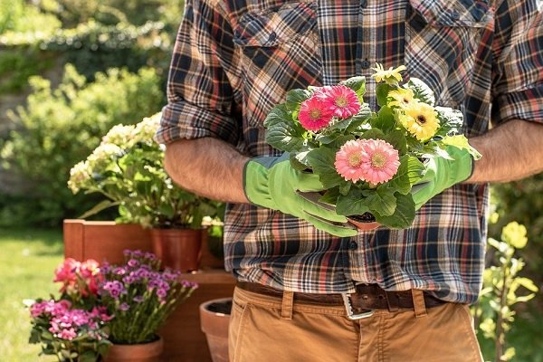 container flower gardening  tips for small spaces
