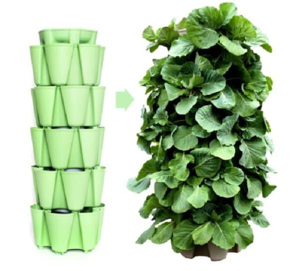 vertical garden - smart idea for small spaces