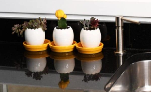 egg planters set