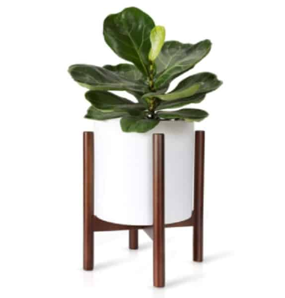 decorate your home with a fiberglass planter