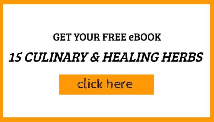 free ebook offer
