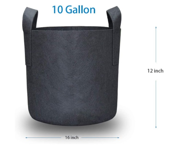 a perfect size grow bag for tomato