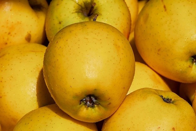 Yellow (or golden) delicious apples