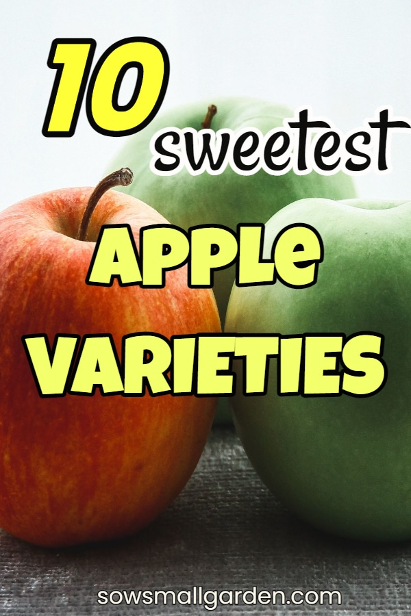 What apples are sweet