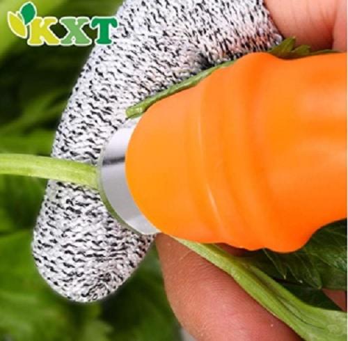 thumb knife for harvesting